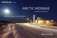 Safe at Home: Arctic Mosque