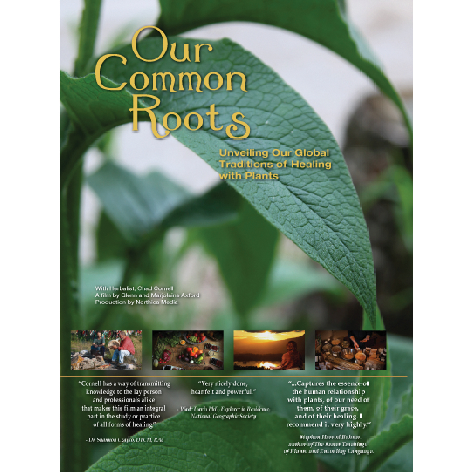 Our Common Roots Dvd